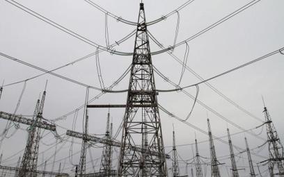 Litwa pod unijnym prądem