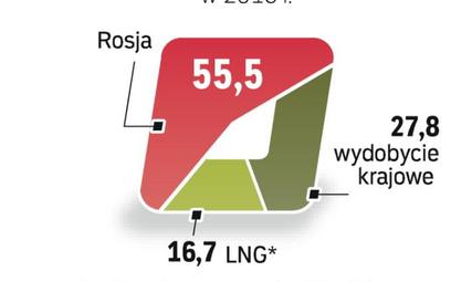 Import gazu skroplonego to sposób na dywersyfikację.