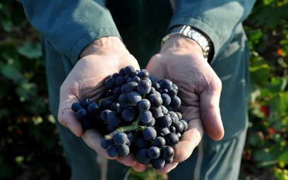 Kiepski rok dla francuskiego wina