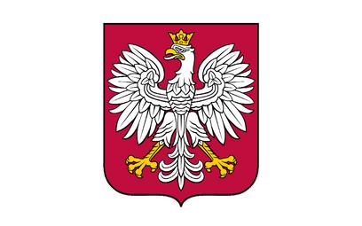 Polski orzeł będzie miał złote nogi i prześwity w koronie