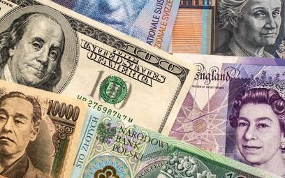 Zwrot na złotym, waluty tańsze już nie będą