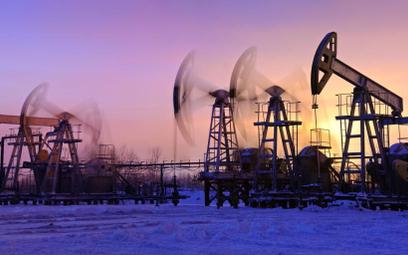 Sankcje wstrzymują Gazprom i Łukoil