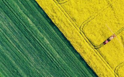 Dwa hektary mógłby sprzedać rolnik deweloperowi pod inwestycję według poselskiego projektu zmiany us