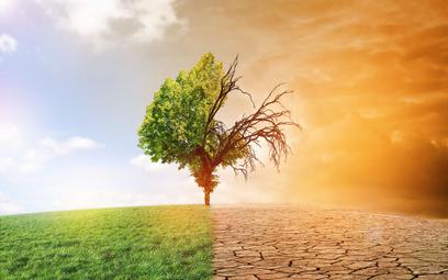 Rząd ma pomysł na walkę z suszą
