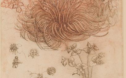 Wystawa stulecia, czyli da Vinci w Luwrze