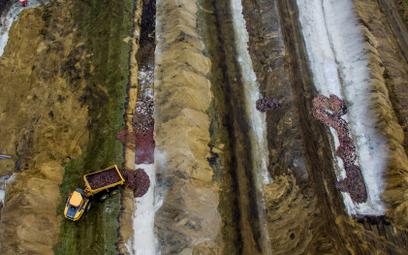 Masowe groby wybitych norek nowym problemem w Danii