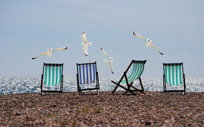 Ekwiwalent za niewykorzystany urlop – kiedy go wypłacić?