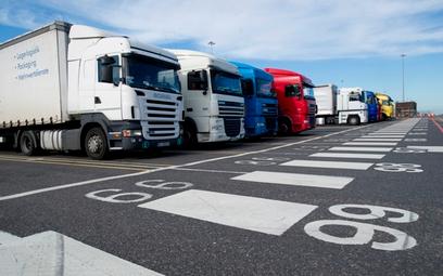 Przewoźnicy powinni wprowadzić dodatki za opóźnienia na brytyjskiej granicy