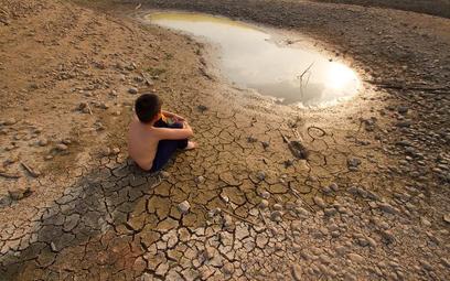 Raport WWF ujawnia szokującą skalę wpływu człowieka na planetę