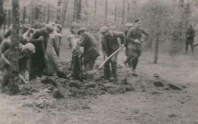 Ekshumacja w Piaśnicy