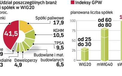 Indeksy warszawskiej giełdy w szerszym wydaniu już w 2008 r.