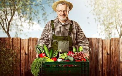 Jak formułować umowy na dostawę produktów rolnych