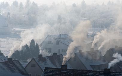 WHO śrubuje normy powietrza. Co to oznacza dla Polski?