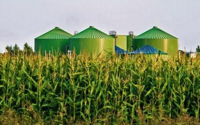Parasol ochronny nad biogazowniami