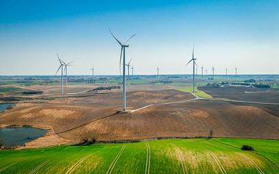 Zielone inwestycje niosą nadzieję  na realną transformację