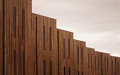W 2022 r. w Polsce powstanie pierwsze drewniane eko-osiedle