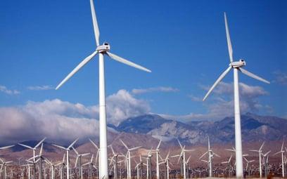 Rekordowy rok litewskich elektrowni wiatrowych