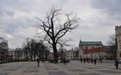 Lublin: Pacjenci pogrzebani po raz drugi