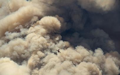 Awaria pojazdu wywołała ogromny pożar wokół Los Angeles