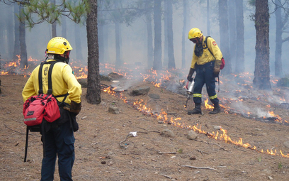 Pożary na Gran Canarii. Ewakuowano kilka miast