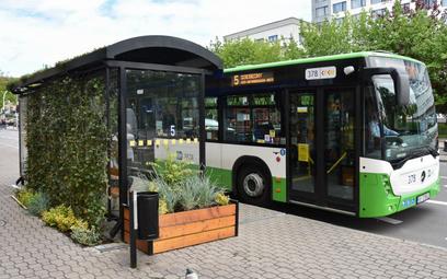 Wiaty: zielone wizytówki miasta