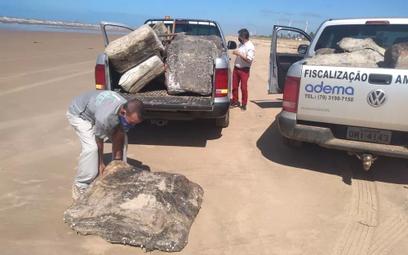 Tajemnicze kauczukowe bloki na plażach w Brazylii. Naukowiec rozwiązał zagadkę?