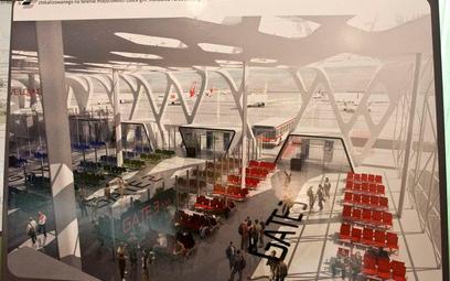Projekt lotniska w Obicach
