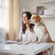 W pracy wykonywanej w domu mogą nastąpić nieprzewidziane trudności ze strony naszych zwierząt domowy