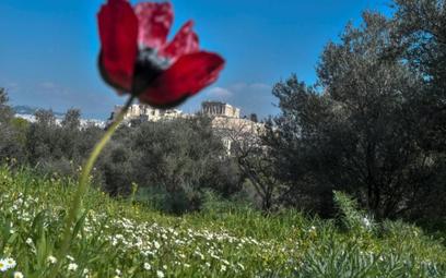 W tym roku będzie mniej lotów do Grecji
