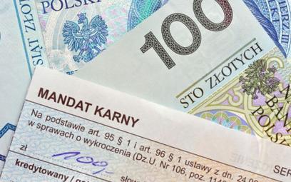 Ministerstwo: nie będzie kar 30 tys. zł za drobne wykroczenia