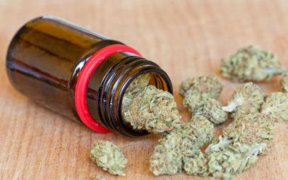 Sondaż: Polacy za legalizacją marihuany