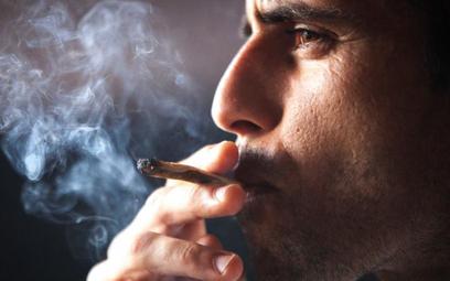 Większość umarzanych spraw dotyczy użytkowników marihuany