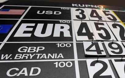 Miliardowe resztówki walut w strefie euro