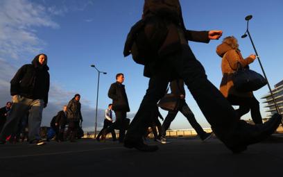 Polscy studenci w Wielkiej Brytanii nie chcą być emigrantami