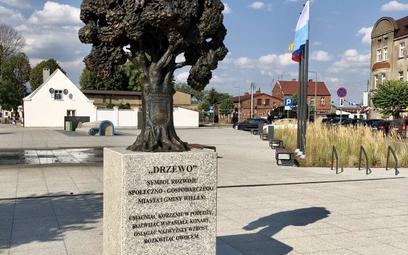 Zamiast żywych drzew, betonowy plac i… pomnik drzewa