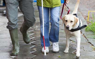 HFPC: Firma naruszyła dobra osobiste niewidomej z psem, a teraz uchyla się od wykonania wyroku