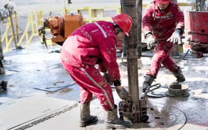Nigeria rozpędza pompy, Rosja zrzuca winę na OPEC