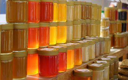 Dolnośląskie: Tegoroczne zbiory miodu wrzosowego najlepsze od trzech lat