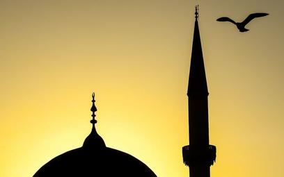 Helsinki obawiają się muzułmańskiego centrum