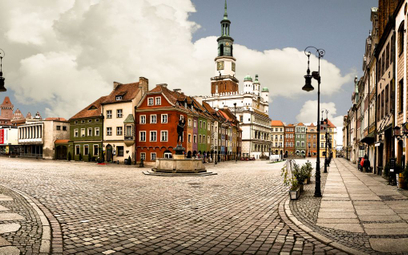 Poznań stawia na rośliny w centrum miasta