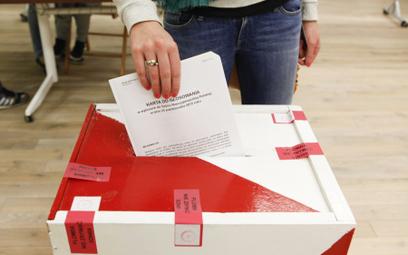 Polonia zmobilizowana: 400 tys. osób chce głosować za granicą