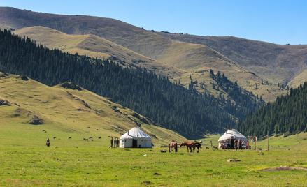 Kazachstan będąc dziewiątym państwem na świecie pod względem powierzchni jest wymagającym rynkiem, j