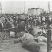 Obóz przejściowy w Pruszkowie w 1944 r.