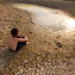 Liczba dni z temperaturami powyżej  50 stopni Celsjusza podwoiła się  w ciągu poprzedniej dekady.