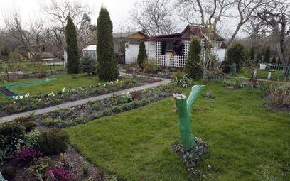 Koronawirus: czy wolno korzystać z działek w rodzinnych ogrodach działkowych