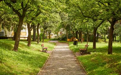 Polityka władz Lublina wpisuje się w ideę Nowego Bauhausu: nowoczesne technologie, dużo zieleni, kon