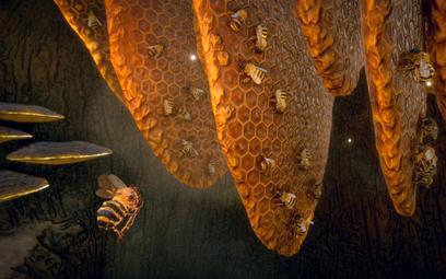 Symulator pszczoły pozyskał wydawcę