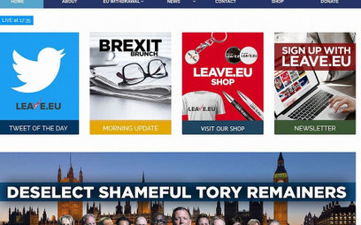 Twardy brexit? Brytyjczycy stracą 340 tys. adresów w sieci