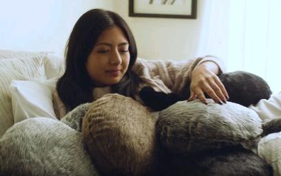 Petit Qoobo – terapeutyczny, koci robot idealny dla alergików