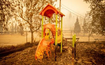Pożary w USA. Miasteczko spalone w 80 proc.